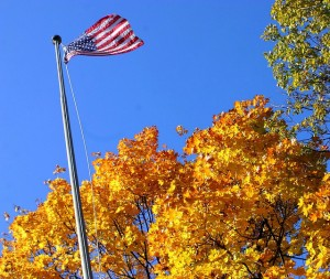 American flag and trees